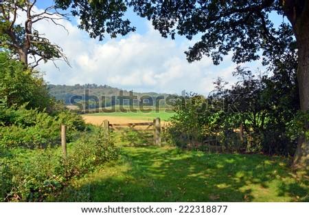 Bucolic England - Cranleigh Farm  Near Guilford in Surrey on a warm sunny summer day. - stock photo