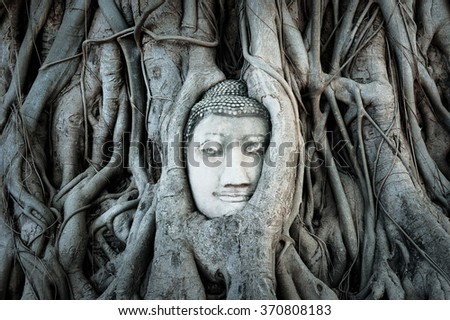 Buddha head covered by roots of a tree in Ayutthaya. Thailand - stock photo