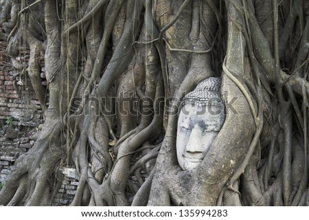 Buddha statue in the roots of tree  , Ayutthaya, Thailand - stock photo