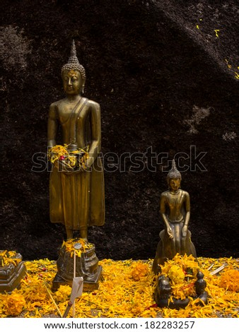 Buddha statue with glowing flowers at background of black stone,Thailand - stock photo