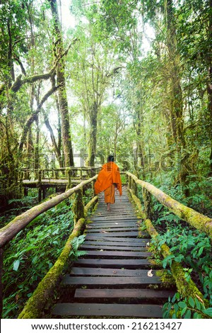 Buddhist monk at wooden bridge in misty tropical rain forest. Sun beams shining through trees at jungle landscape. Travel background at Doi Inthanon Park, Thailand - stock photo
