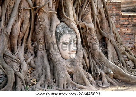 Buddhist temples in the jungle in Thailand - stock photo