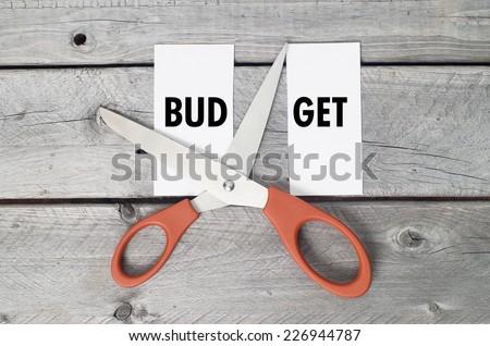 Budget cut concept - stock photo