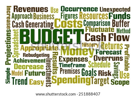 Budget word cloud on white background - stock photo