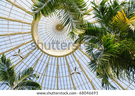 Buffalo and Erie County Botanical Gardens glass ceiling - stock photo