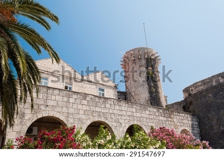 Buildings, palm tree and flowers in Korcula in Croatia - stock photo