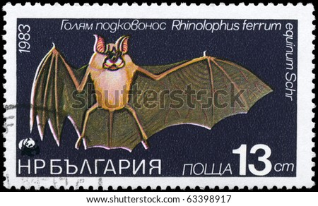 """BULGARIA - CIRCA 1983: A Stamp printed in BULGARIA shows image of a Horseshoe Bat with the description """"Rhinolophus ferrum"""" from the series """"Various bats and rodents"""", circa 1983 - stock photo"""