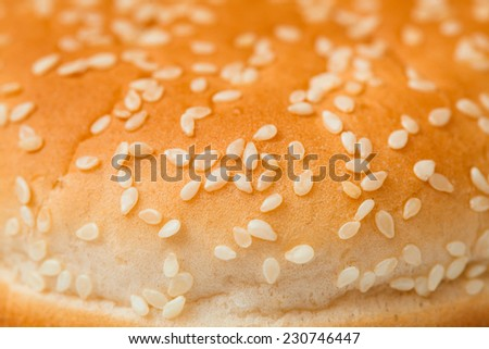 bun with sesame seeds for a hamburger isolated on white background, close-up. - stock photo