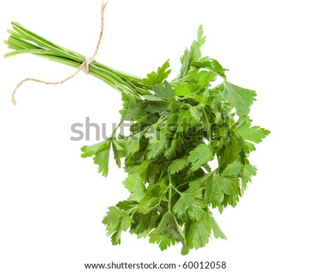 bunch fresh parsley on white background - stock photo