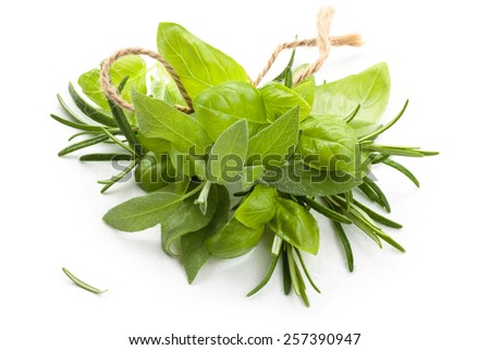 Bunch of  basil, rosemary and sage. Isolated on white background. - stock photo