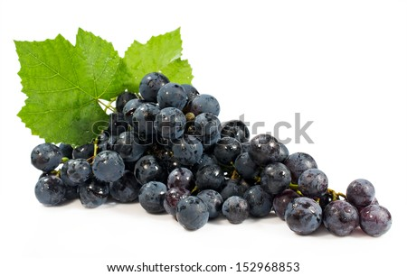bunch of blue grapes isolated on white background - stock photo