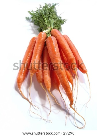 Bunch of Carrots on white - stock photo