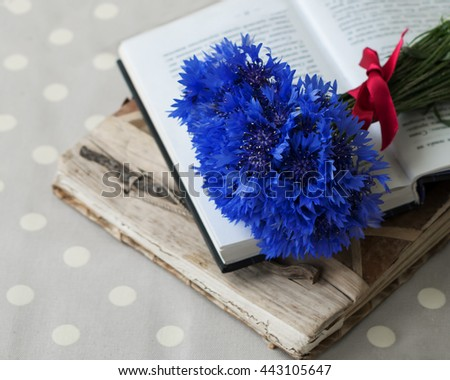 Bunch of cornflowers field. Bright flowers are on the books. - stock photo