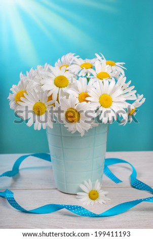 bunch of fresh camomile flowers on blue background - stock photo