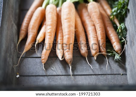 bunch of fresh carrots in a wooden tray - stock photo