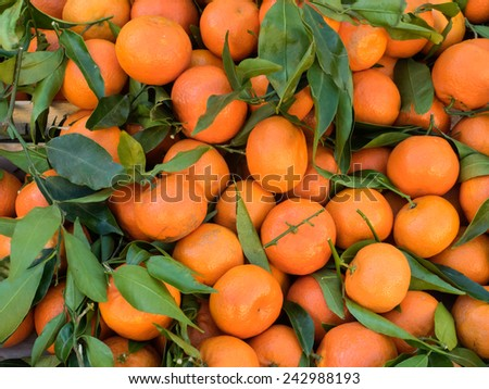 Bunch of fresh clementines with green leaves - stock photo
