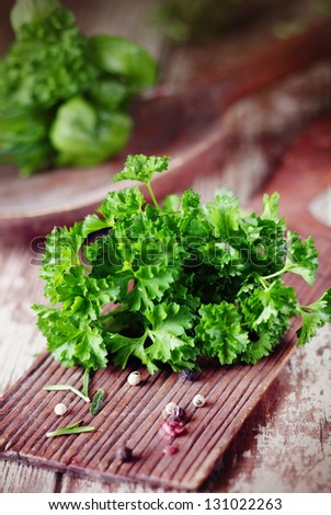 Bunch of fresh crinkly leafed parsley lying on a rustic wooden chopping board on a grunge wooden kitchen table - stock photo