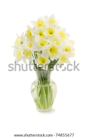 Bunch of fresh daffodils in a glass vase - stock photo
