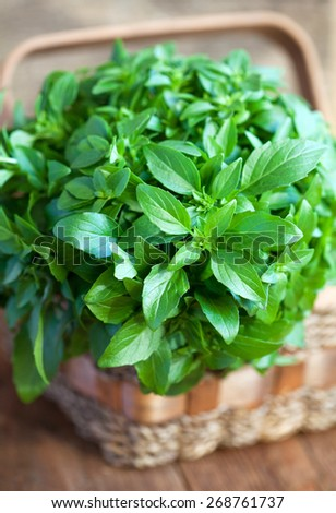 Bunch of fresh green basil in a basket on a wooden table, selective focus - stock photo