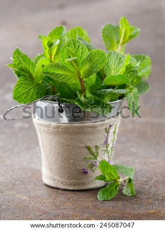 bunch of fresh green fragrant mint on a wooden table - stock photo