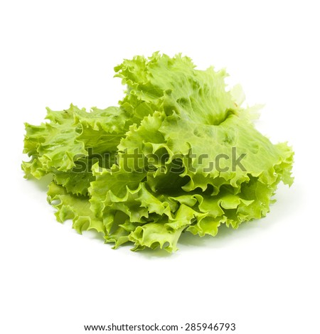 Bunch of fresh green lettuce on white background - stock photo