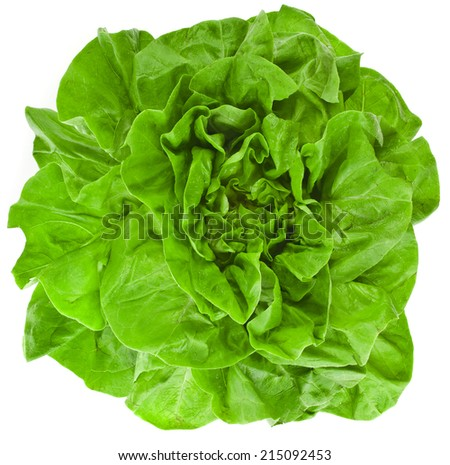 Bunch of Fresh Green Salad surface top view  Isolated On White Background - stock photo
