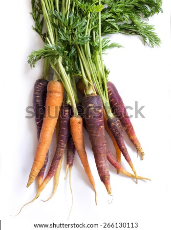 Bunch of fresh organic rainbow carrots  isolated on white - stock photo
