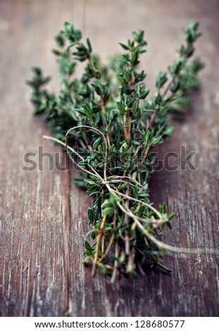Bunch of fresh thyme - stock photo