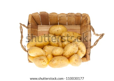 bunch of freshly harvested potatoes coming out a wooden basket on a white background - stock photo