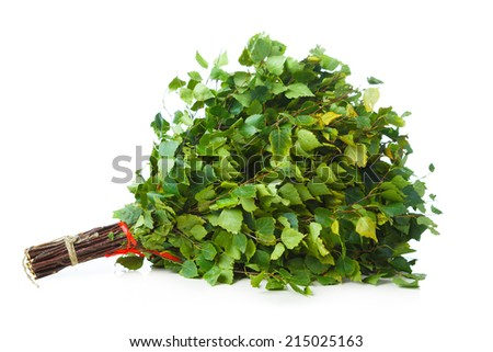 bunch of green birch twigs in hand isolated on white - stock photo