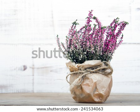 bunch of heather on white wooden background - stock photo