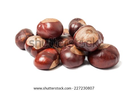 Bunch of horse chestnuts isolated on white background - stock photo