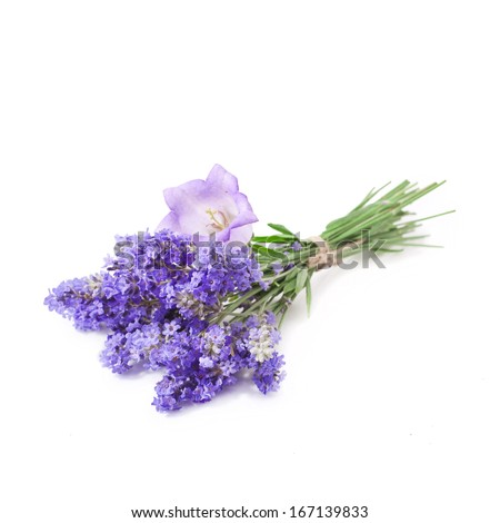 Bunch of lavender and campanula flowers isolated on white background  - stock photo