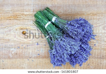 bunch of lavender flowers - stock photo