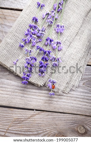 Bunch of lavender flowers with ladybird  on an old wood table  - stock photo