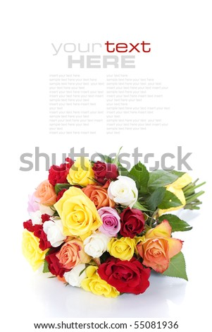 Bunch of multi-colored roses over white (with sample text) - stock photo