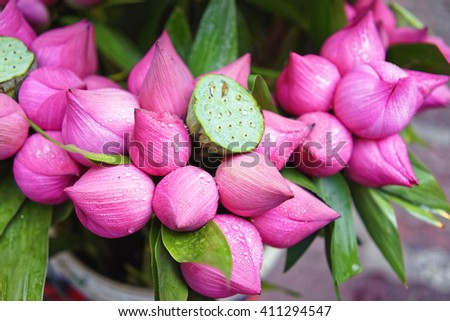 Bunch of pink lotus flowers in a market in Vietnam - stock photo