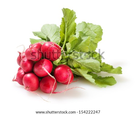 Bunch of radish isolated on white background - stock photo