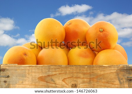 bunch of red grapefruits in a wooden crate against a blue sky with clouds - stock photo
