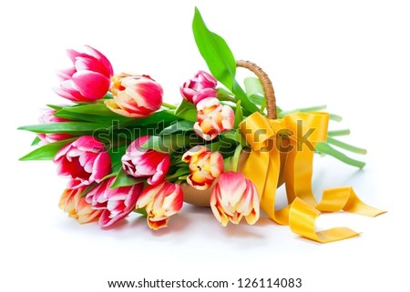 Bunch of red-yellow tulips in a basket on white background, - stock photo