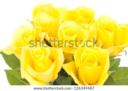Bunch of roses - stock photo
