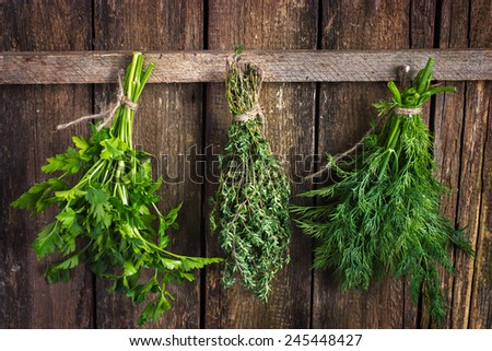 Bunch of thyme, dill and parsley hanging  on old wooden board - stock photo