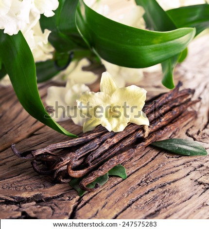 Bunch of vanilla sticks and flower on old wood. - stock photo
