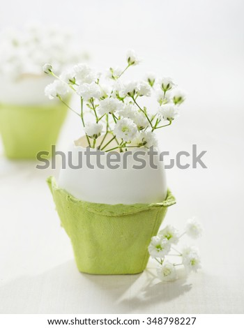 Bunch of white baby's breath flowers (gypsophila) in eggs shell on the white wooden plank. Shallow depth of field, focus on near flowers. Easter concept - stock photo