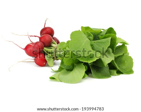 Bunch oh fresh garden radish on a white background     - stock photo