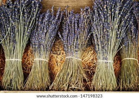 Bunches of dried lavender flowers for sale in Provence, France - stock photo