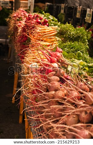 Bunches of fresh organic root vegetables including beet root, turnip, parsnip, radish. For sale at outdoor farmers market. - stock photo
