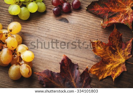 bunches of grapes and leaf - stock photo