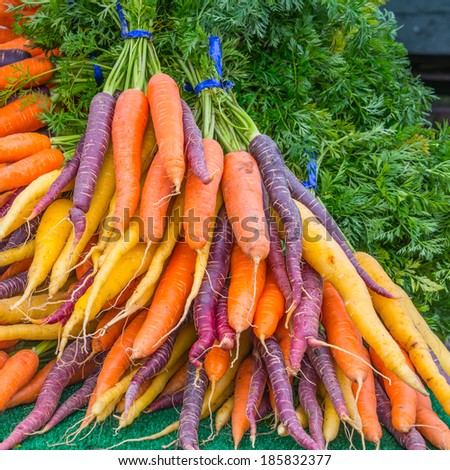 Bunches Organic Rainbow Carrots. Square. - stock photo