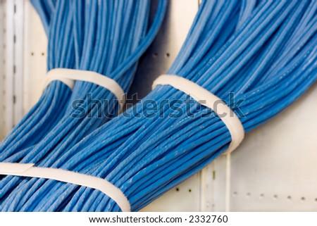 bundle of blue computer cables - stock photo